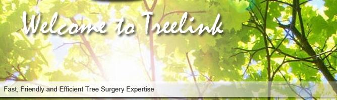 Main photo for Treelink Northwest Ltd