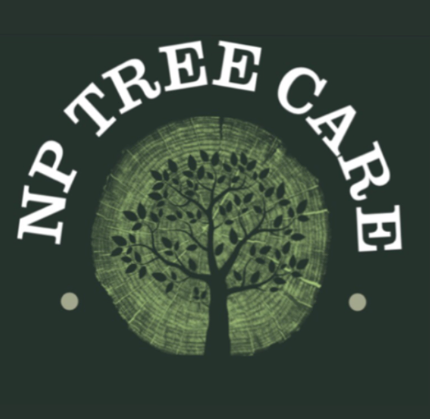 Main photo for NP Tree Care