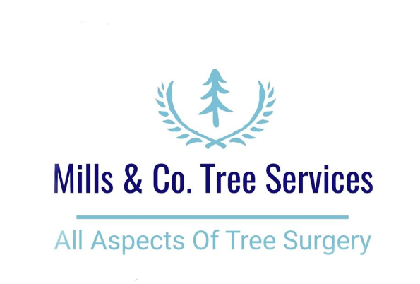 Main photo for Mills & Co. Tree Services Enfield