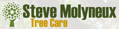Main photo for Steve Molyneux Tree Care & Consultancy