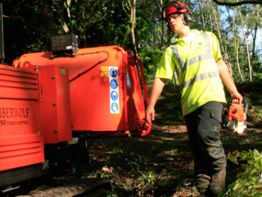Main photo for Max Bayles Professional Tree Care Ltd