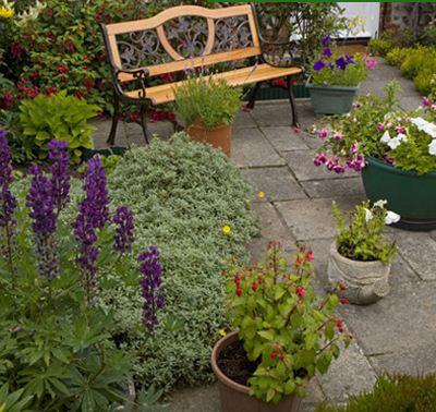 Main photo for Cliff Phillips Landscapes
