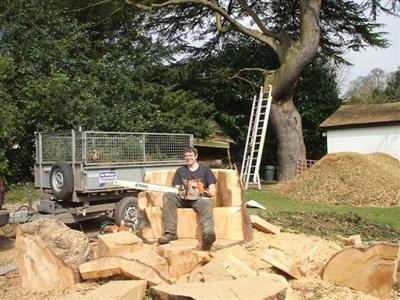 Main photo for Mattree Professional Tree Care
