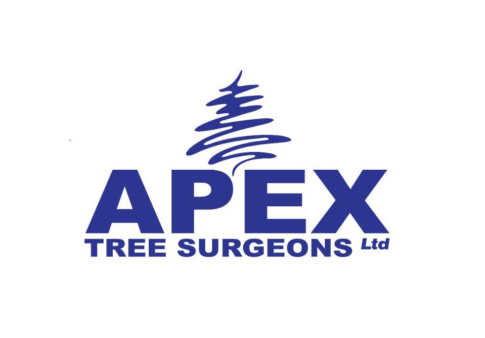 Main photo for Apex Tree Surgeons Ltd