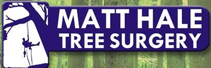 Main photo for Matt Hale Tree Surgery Ltd