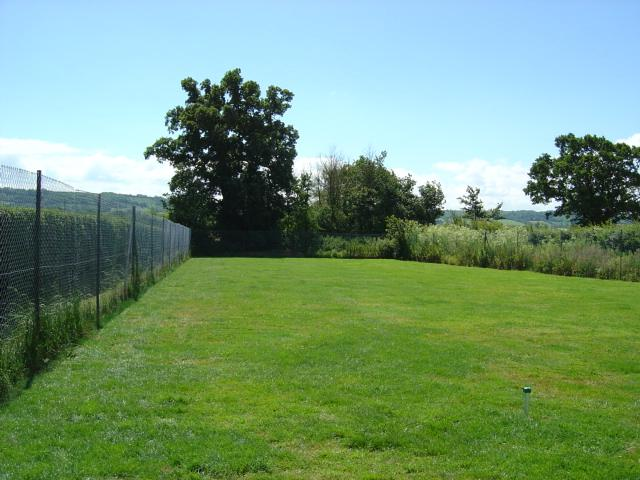 Main photo for Goldborough House Kennels & Cattery