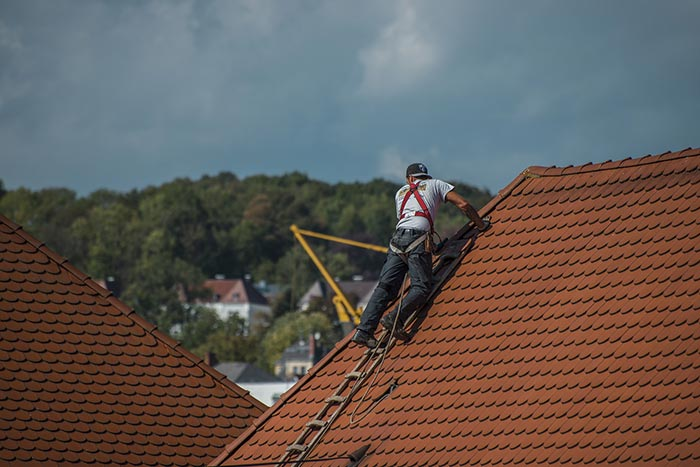 Inspect your roof regularly with the help of a local roofer