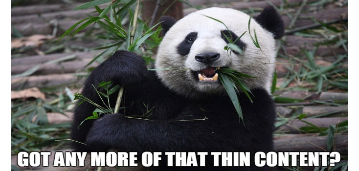 Google Panda thin content penalty