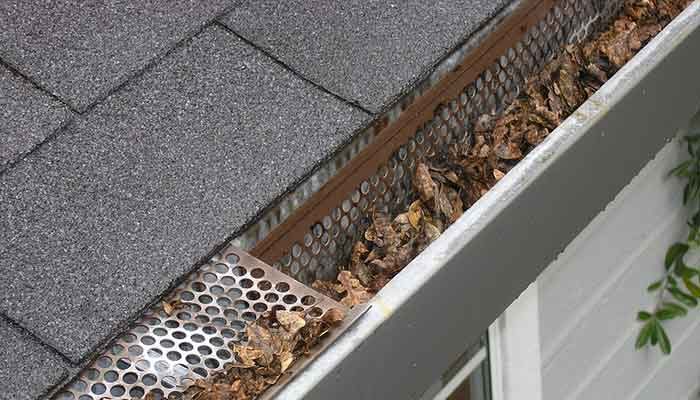 Signs that you have clogged gutters