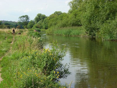 An example of Avon Valley Nature Reserve on the Funeral Directors in Salisbury page on Thomson Local.