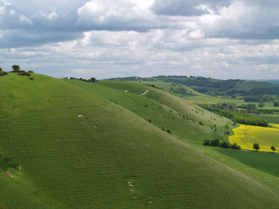 An example of Milk Hill on the Funeral Directors in Wiltshire page on Thomson Local.